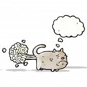 picture of farting  - cartoon farting cat - JPG