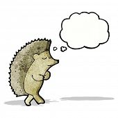 cartoon shy hedgehog