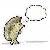 cartoon shy hedgehog