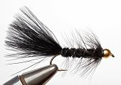 stock photo of steelhead  - Versatile Fishing Fly that Imitates a Minnow - JPG