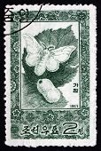 Postage Stamp North Korea 1965 Silkworm Moth And Cocoon