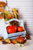Pumpkins in wooden box and leaves on wooden table on wooden wall background