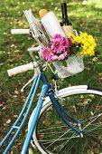 Bicycle with flowers and bottle of wine in metal basket on park background