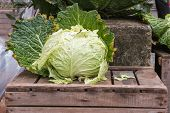 Lettuce On Wooden Case, Mixed Vegetables On Background