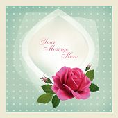 Beautiful Vector Greeting Card With Flowers