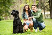 Young Couple With Black Giant Schnauzer