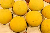 Food Background. Closeup On Tropical Fruits Melons.