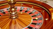 Thirty One Roulette