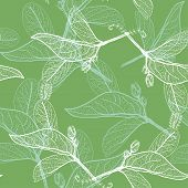 Leaves contours on green background. floral seamless pattern, hand-drawn. Vector
