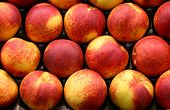 Peach Display