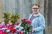 Senior woman holding flowering plants