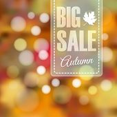 Autumn Fall Sale Poster With Blurred Background And Lights