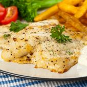 pic of lent  - Fried Catfish fillet with vegetables - JPG