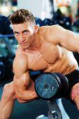 Bodybuilder Doing Dumbbell Exercise