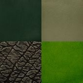 Set Of Green Leather Samples