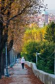 pic of vicenza  - Down road in Mount Berico in Vicenza with a view of the cathedral in the distance - JPG