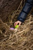 Closeup Shot Of Girls Hand Taking Easter Egg From The Nest