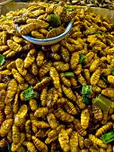 foto of worm  - fired silk worm as snack in Asia countries like Thailand - JPG