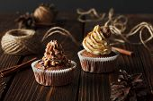 Two Brown Chocolate Cupcakes On Wood Background