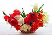 Bouquet of spring flower tulips