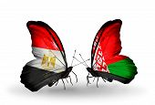 Two Butterflies With Flags On Wings As Symbol Of Relations Egypt And Belarus