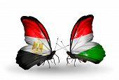 Two Butterflies With Flags On Wings As Symbol Of Relations Egypt And Hungary
