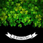 Saint Patricks Day Vector Background With Realistic Shamrock Leaves