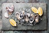 image of pearl-oyster  - Opened Oysters on stone plate with ice and lemon - JPG