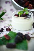 foto of home addition  - sweet delicious home made yogurt with mulberry - JPG