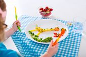 picture of vegetarian meal  - Healthy vegetarian lunch for little kids - JPG