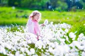 stock photo of little young child children girl toddler  - Little girl playing in a flower field - JPG