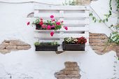 pic of wooden pallet  - White storage industrial pallet used in gardening for a wall decoration as a shelf for flowerpots and other objects - JPG