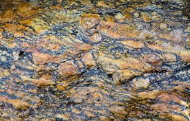picture of gneiss  - Gneiss metamorphic rock pattern closeup on a beach in Sri Lanka Asia - JPG