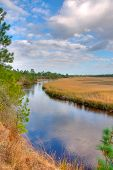 Marsh in HDR