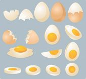 Eggs in various forms and slices, isometric 3d vector illustration