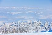 Jeseniky Mountains In Winter