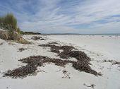 Geograph Bay, Western Australia