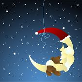 picture of baby animal  - Moon and teddy - JPG