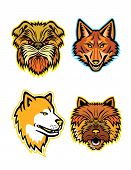 Mascot Icon Illustration Set Of Heads Of Terriers And Wolves Or Canids, Like The Affenpinscher Dog O poster