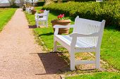 Picture Of Park Benches Along A Footpath In Early Spring poster
