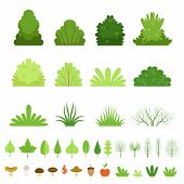 Set Of Different Forest Bushes, Grasses, Leaves Of Trees, Mushrooms And Fruits. Vector Illustration poster