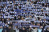 Dynamo Kyiv Team Supporters