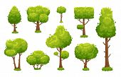 Cartoon Green Tree. Environmental Forest Or Park Trees Cute Landscape Wood Plant Bushes Isolated For poster