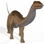 image of apatosaurus  - Rendered Image of a Dinosaur