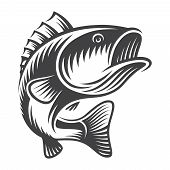 Vintage Bass Fish Concept In Monochrome Style Isolated Vector Illustration poster