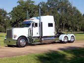 stock photo of 18 wheeler  - A white 18 wheeler with cypress trees in the background - JPG