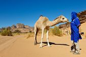 Tourist And Camel In The Sahara Desert