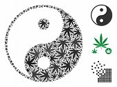 Yin Yang Composition Of Cannabis Leaves In Different Sizes And Color Tones. Vector Flat Ganja Leaves poster