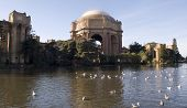 Palace Of Fine Arts On Sunny Day poster