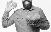 Guy Presents Homegrown Harvest. Gardening And Fall Crops Concept. Man With Beard Holds Wicker Bowl W poster